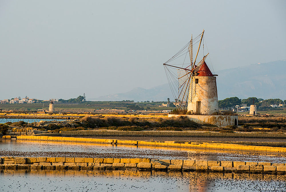 Windmill at the lagoon of Lo Stagnone